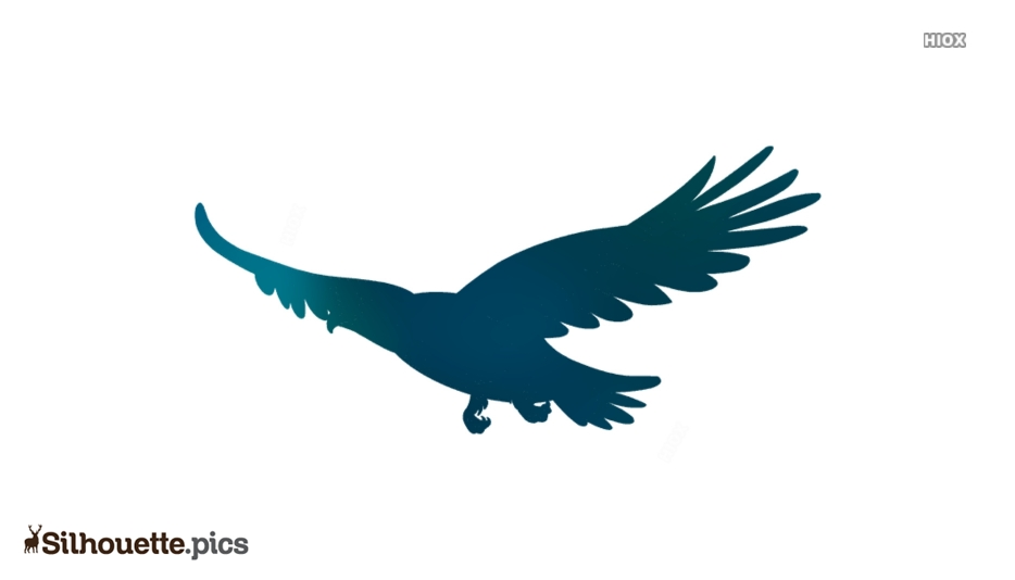 Free Flying Eagle Silhouette
