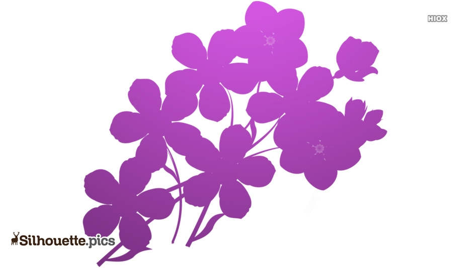 Free Forget Me Not Flowers Silhouette Illustration