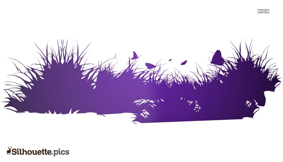 Grass Silhouette Images, Pictures