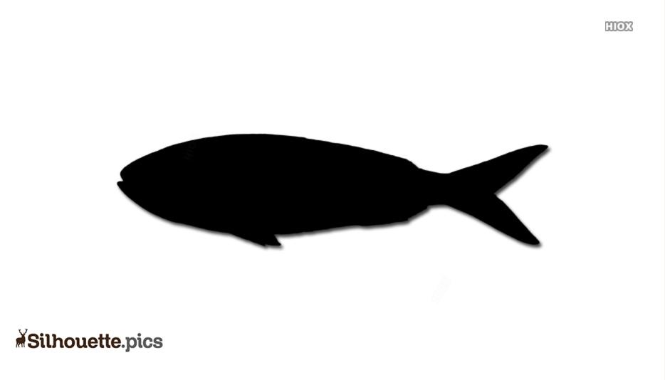 Free Herring Fish Silhouette Image Free Download