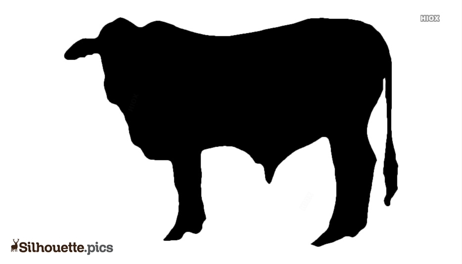 Free Ox Silhouette