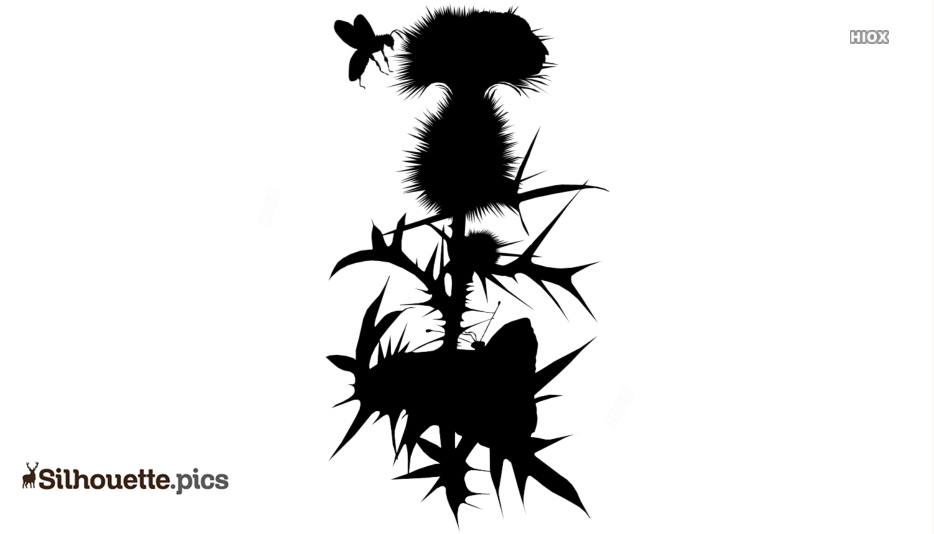 Free Thistle Silhouette