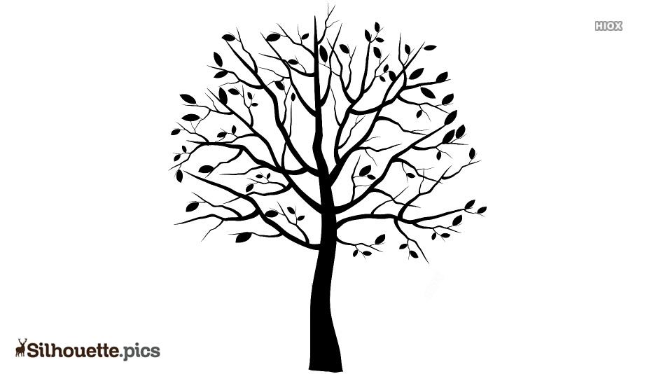 Free Tree Sketch Silhouette
