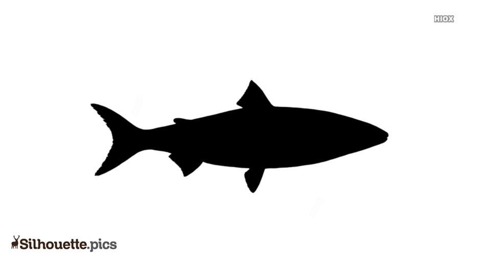 Free Whitefish Silhouette