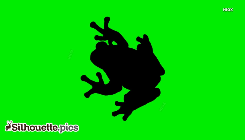 Frog Silhouette Picture