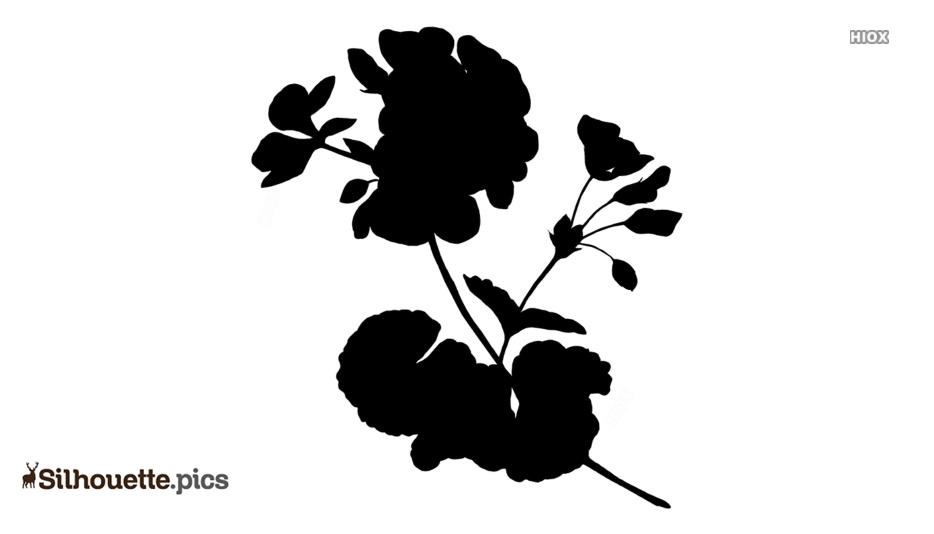Geranium Flowers Silhouette Drawing