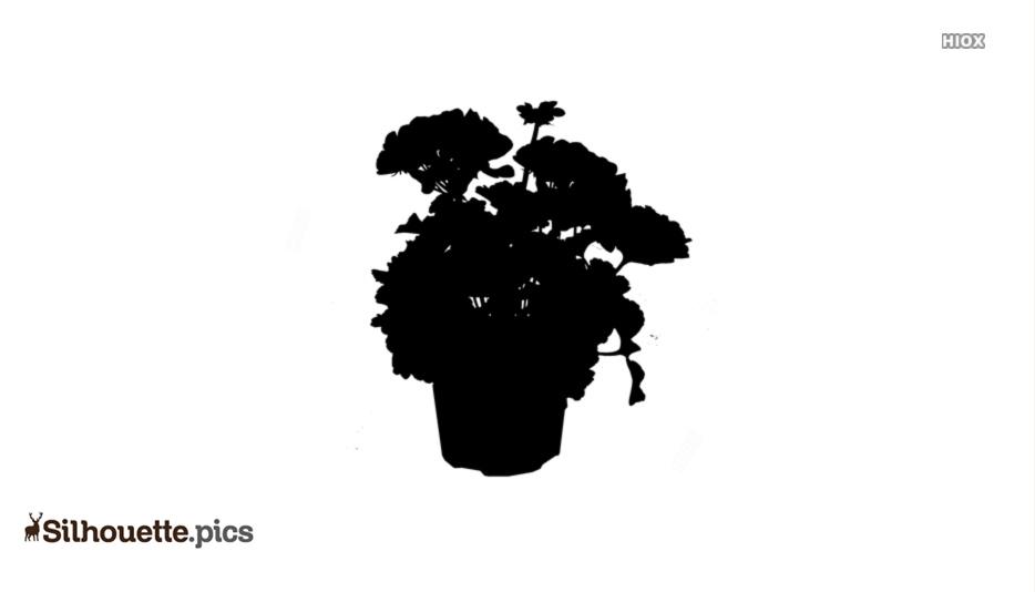 Geranium Flowers Silhouette Free Vector Art