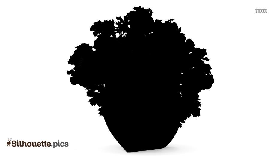 Geranium Flowers Silhouette Image