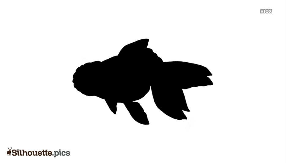 Goldfish Silhouette Free Vector Clipart