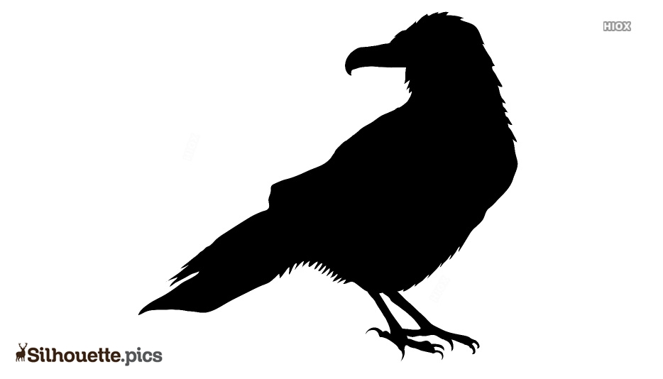 Halloween Raven Silhouette