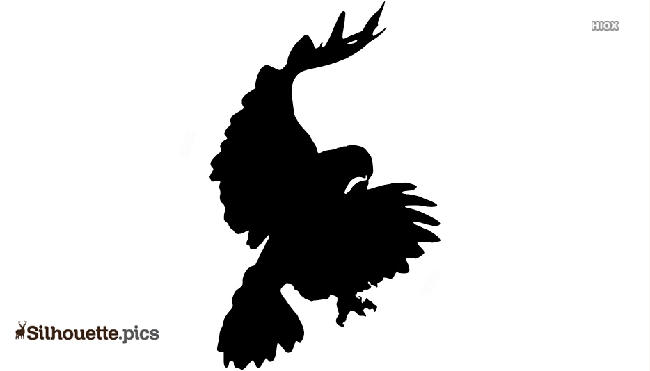 Hawk Pouncing Silhouette