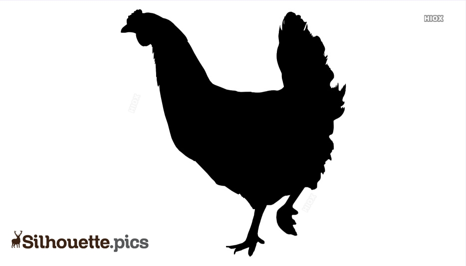 Chicken Silhouette Images, Pictures