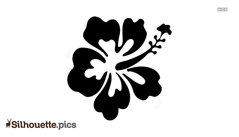 Beautiful Silhouette Images, Pictures