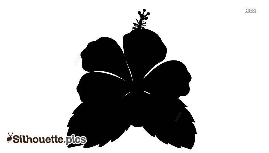 Silhouette Images Of Flowers