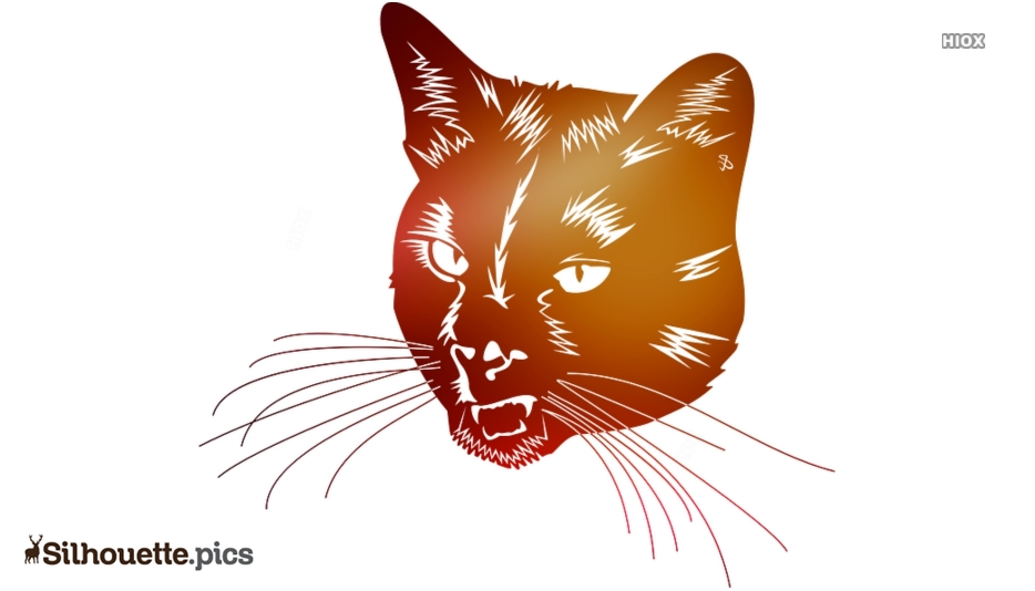 Hissing Cat Silhouette Background