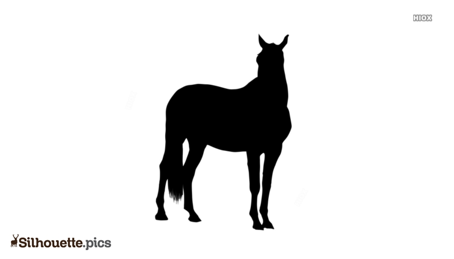 Horse Clipart Silhouette Background
