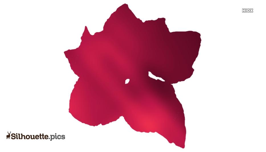 Larkspur Flower Silhouette