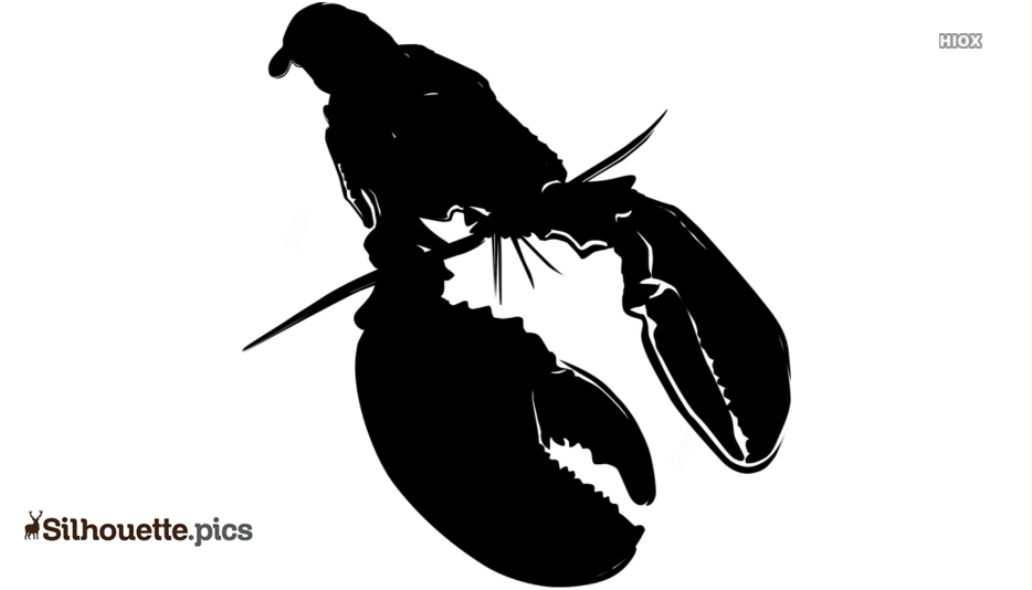 Lobster Silhouette Images, Pictures
