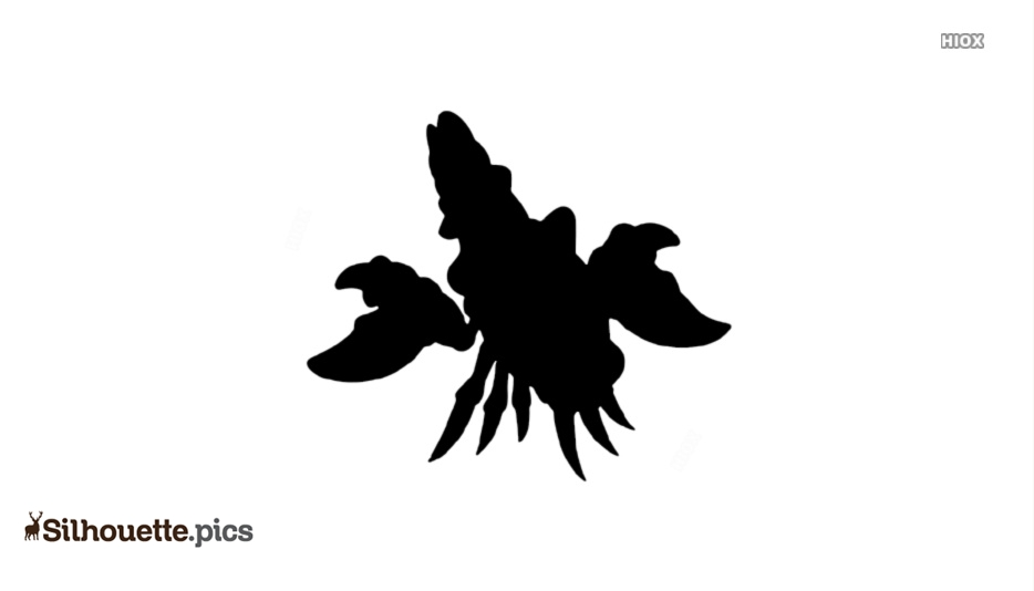 Lobster Silhouette Image And Vector