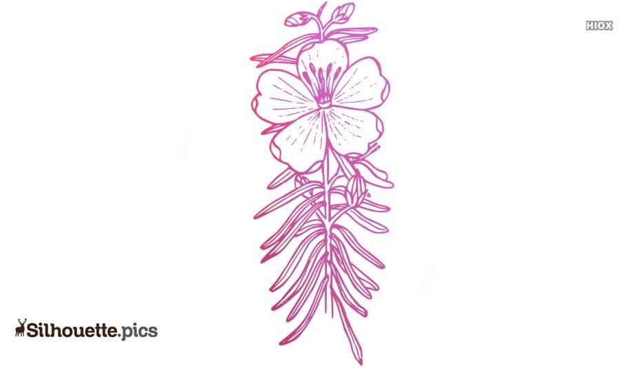 Mountain Bluebells Flower Silhouette Illustration