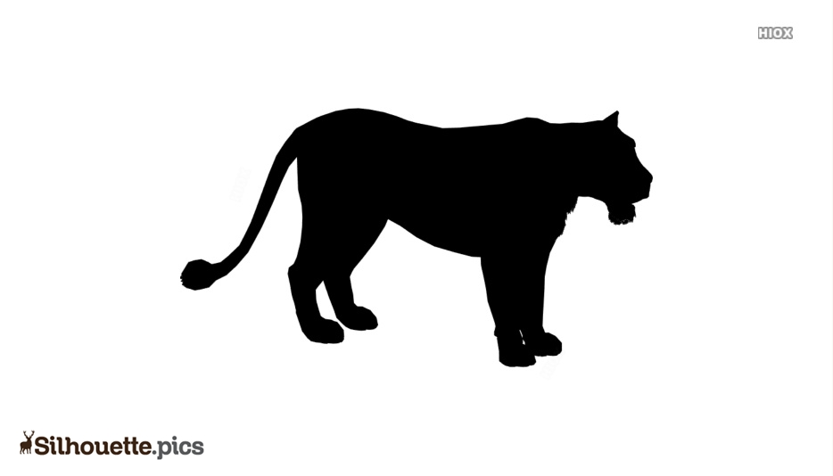 Mountain Lion Silhouette Background