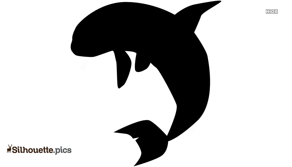 Orca Silhouette Image And Vector