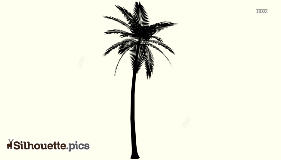 Palm Tree Silhouette Vector Free Download