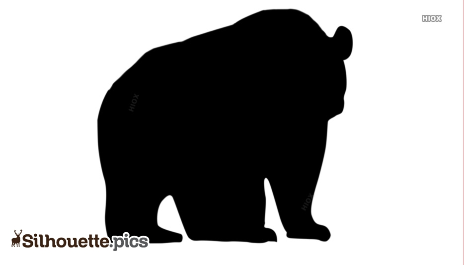 Polar Bear Silhouette Images, Pictures