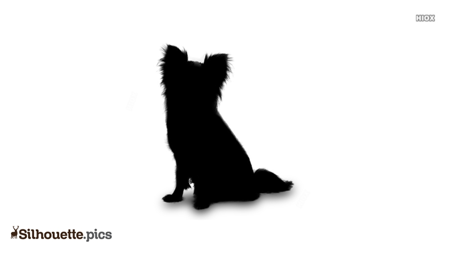 Papillon Small Dog Breeds Silhouette