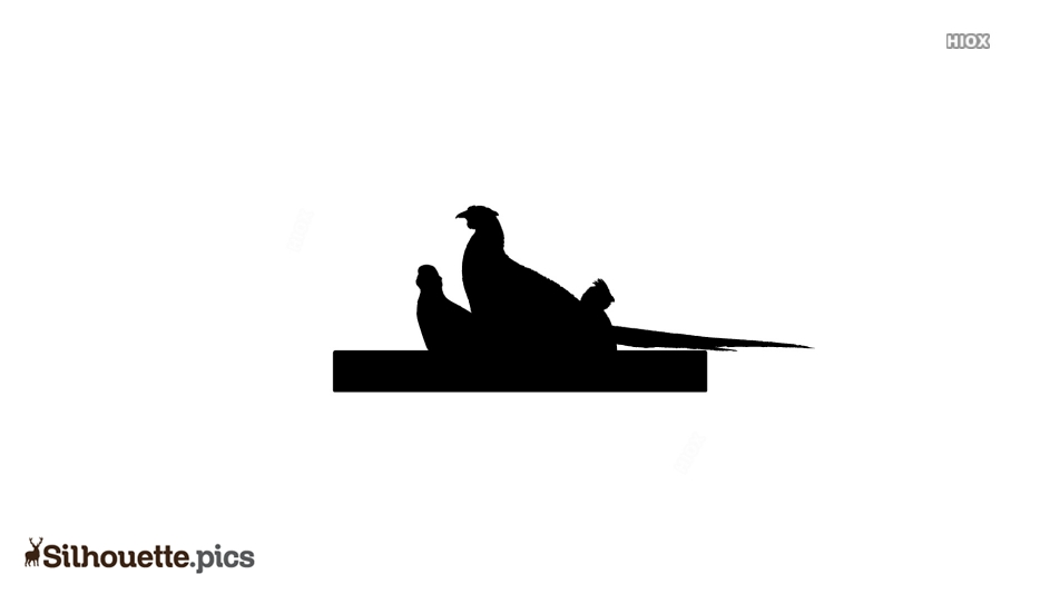 Partridges Birds Silhouette Clipart