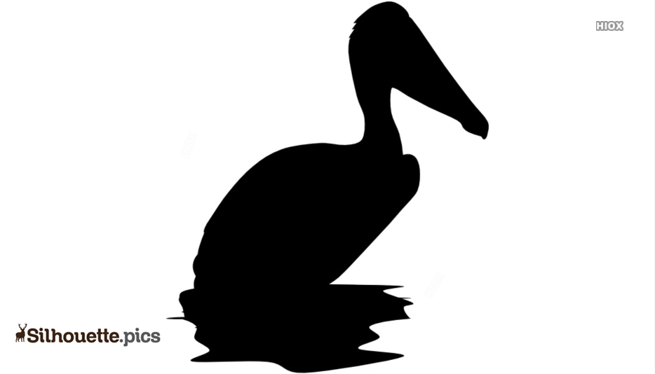 Pelican Silhouette Drawing