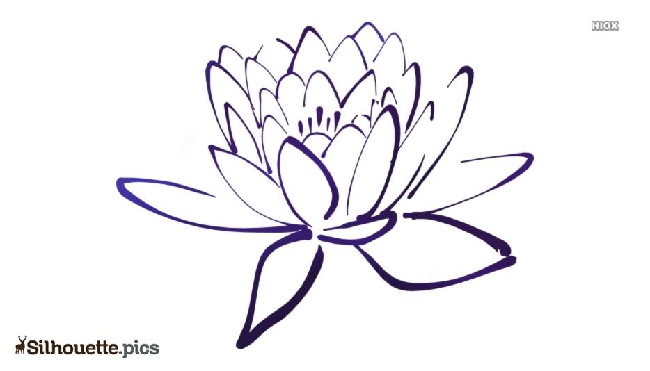 Petal Lotus Silhouette Pic