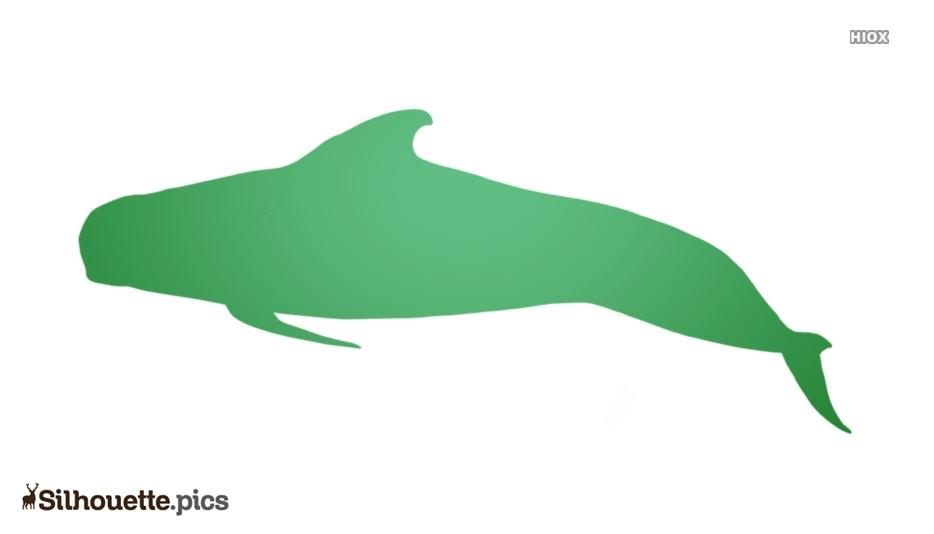 Pilot Whale Silhouette Clipart
