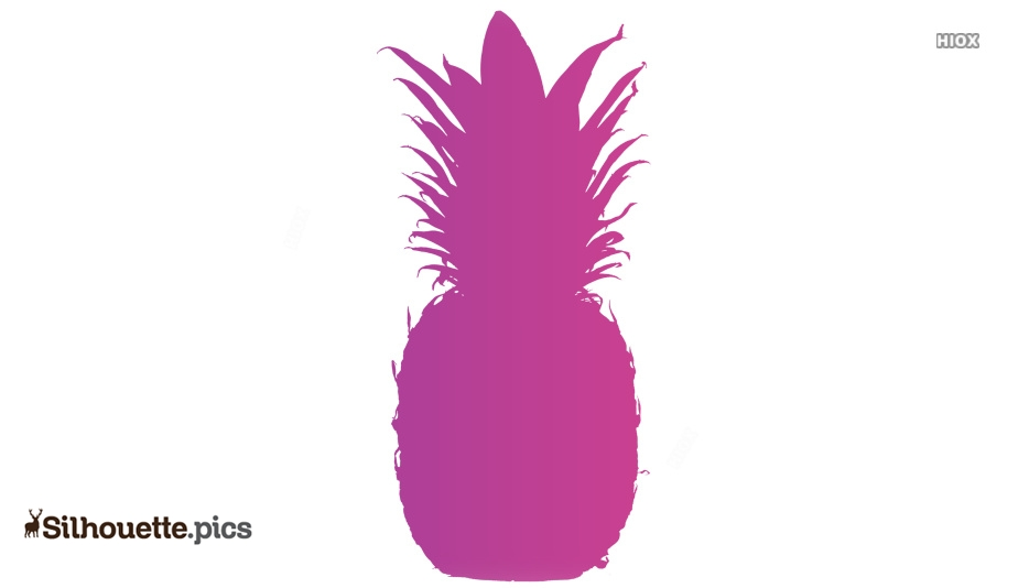 Pineapple Sketch Silhouette