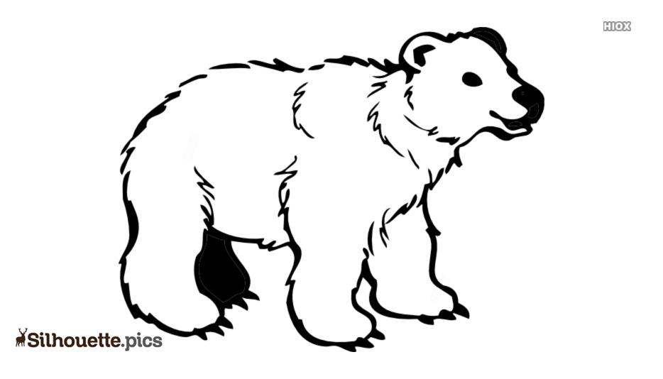 Polar Bear Silhouette Drawing