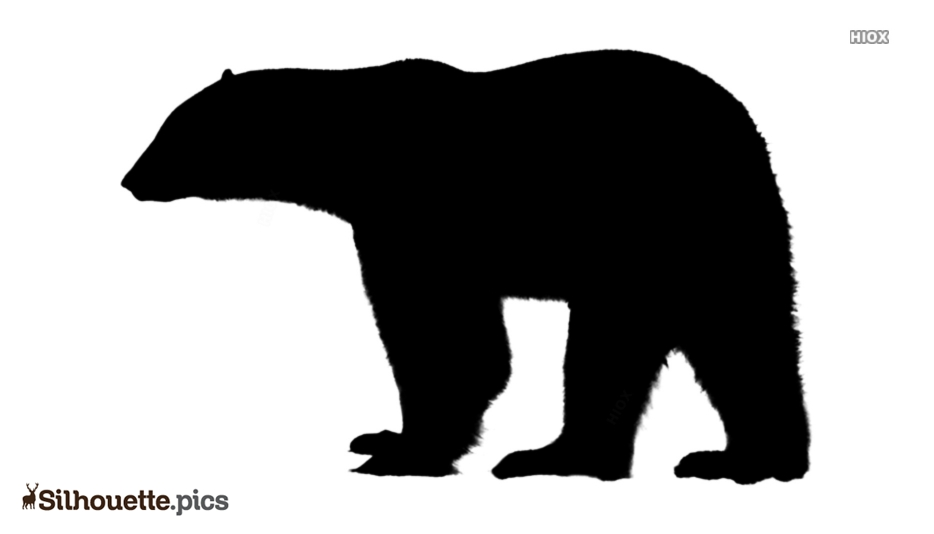 Polar Bear Silhouette Drawing Image