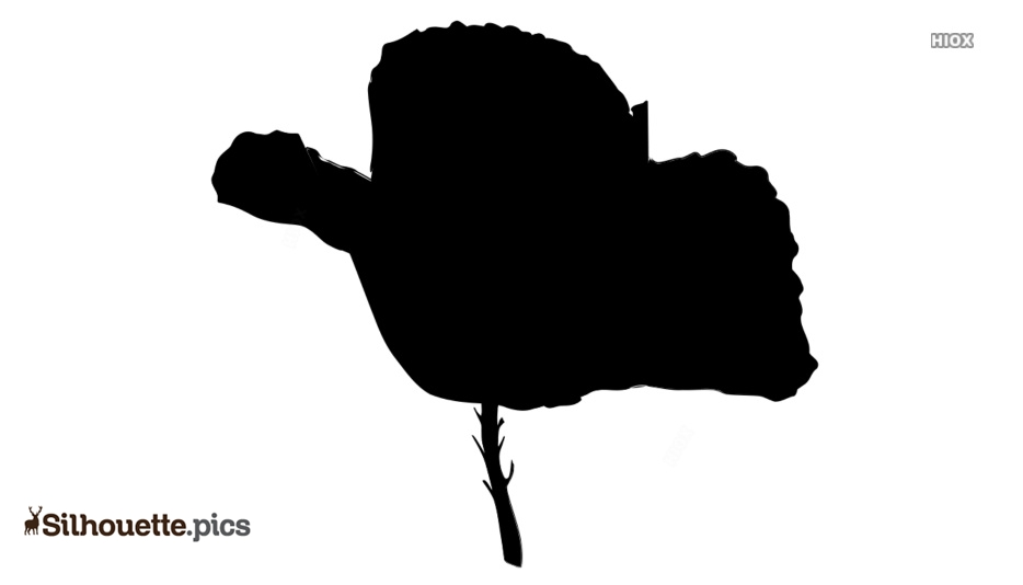 Poppy Flower Silhouette Icon