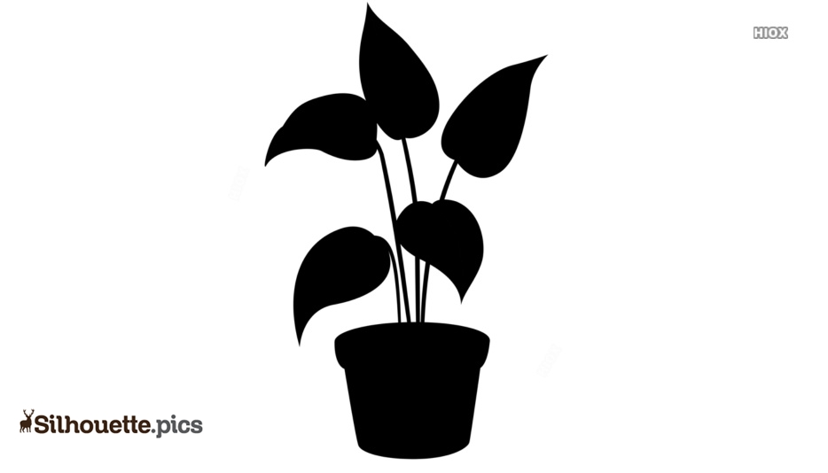 Potted Plant Silhouette Image Free Download