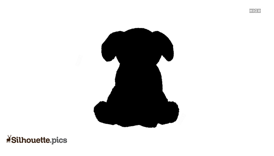 Pet Animals Silhouette Images, Pictures