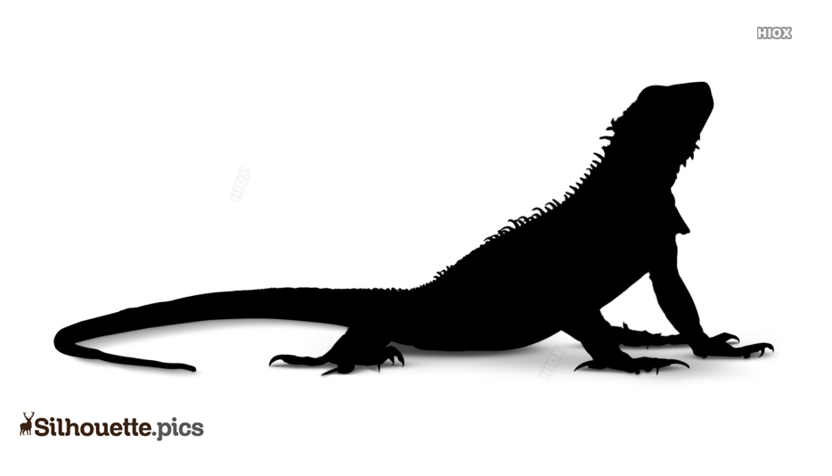 Lizard Silhouette Vector Images Free Download
