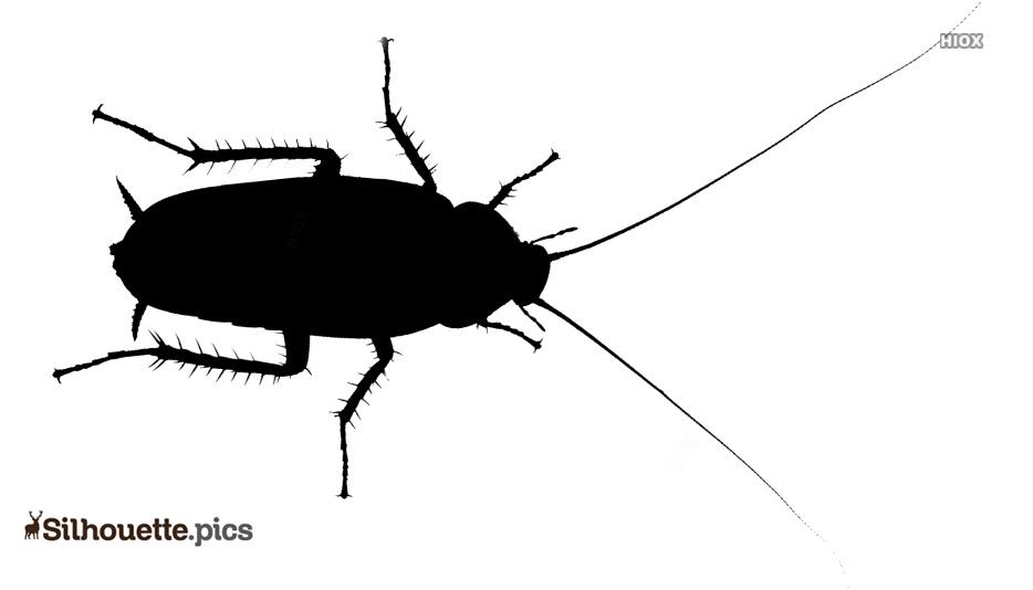 Roach Silhouette Clip Art