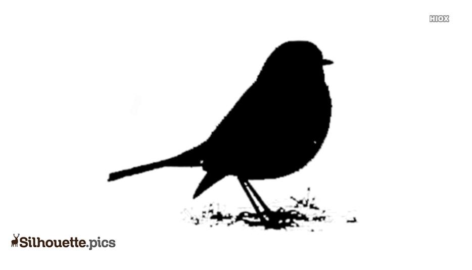 Robin Bird Silhouette Clip Art