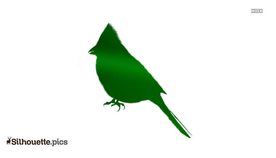 Robin Bird Silhouette Image