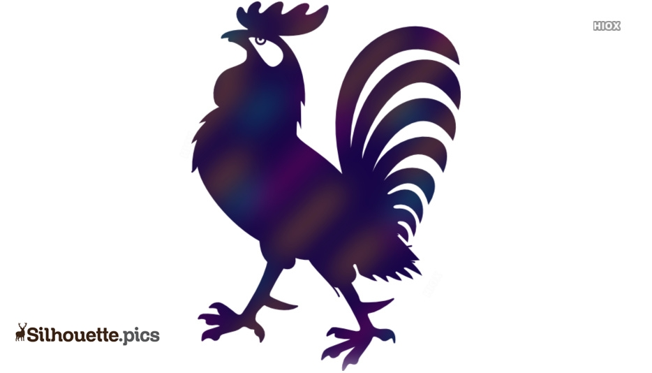 Rooster Drawing Silhouette Illustration