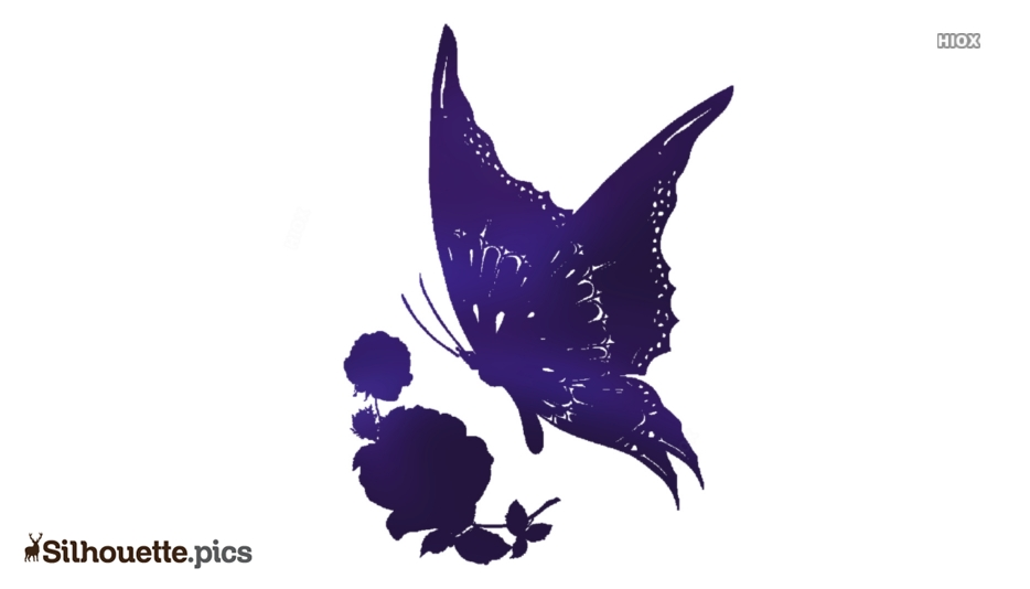 Rose And Butterfly Silhouette Vector And Graphics