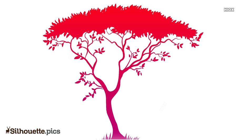 Safari Tree Silhouette Image And Vector