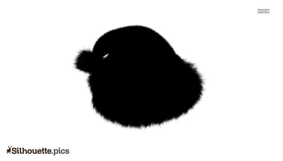 Cartoon Hat Silhouette Images, Pics