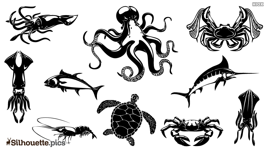 Sea Animal Clipart Black and White Silhouette