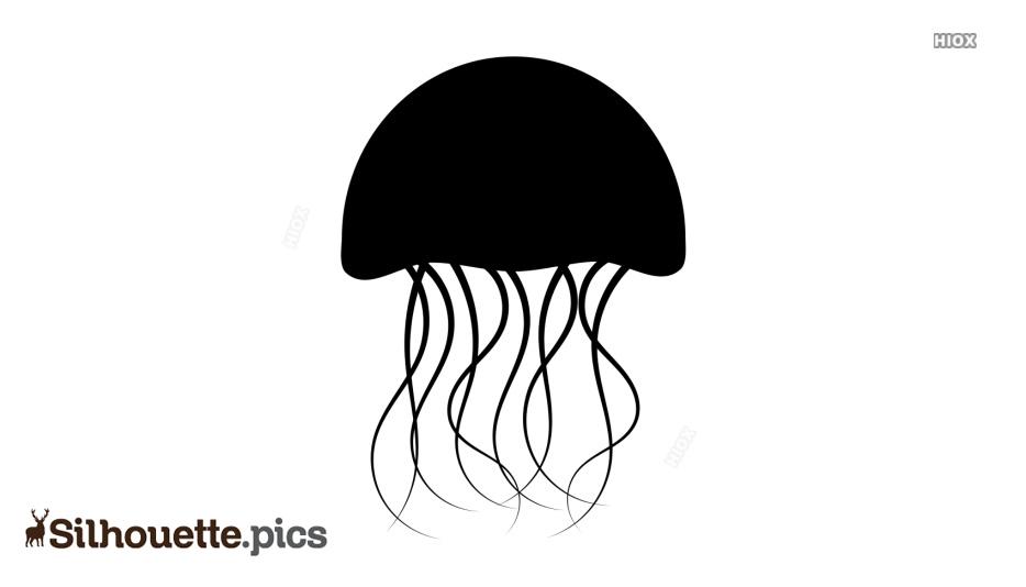 Sea Creature Png Silhouette