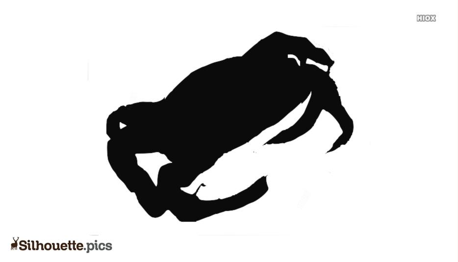 Sea Food Silhouette Illustration